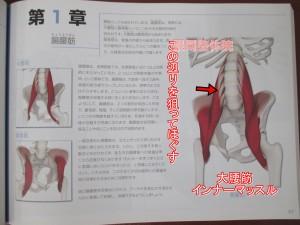 大腰筋腸骨筋狙う位置